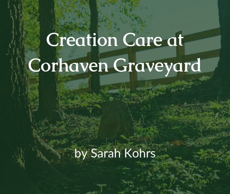 Creation Care at Corhaven Graveyard