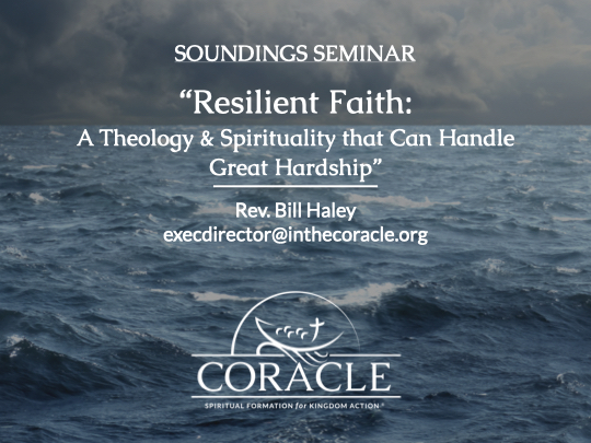 """Digital Soundings Seminar """"Resilient Faith: A Theology & Spirituality that Can Handle Great Hardship"""""""