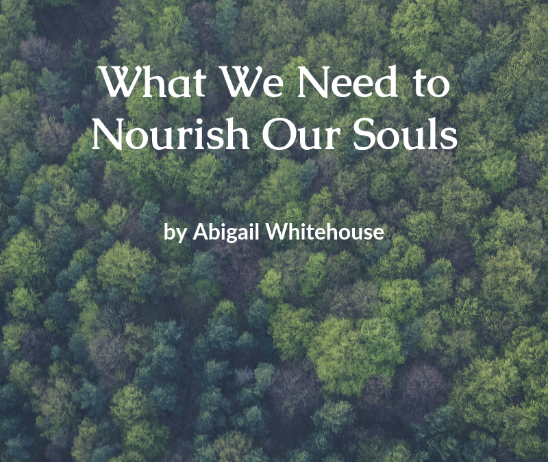 What We Need to Nourish Our Souls
